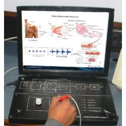 Scientech2354A TechBook para la Comprensión de Electromiografía