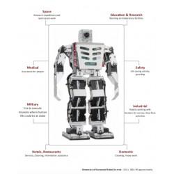 HBE-Robonova AI II Humanoid Robot