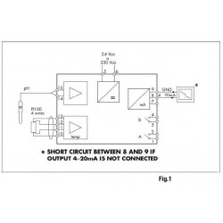 DO9403T-R1 Transmissor de PH ou ORP