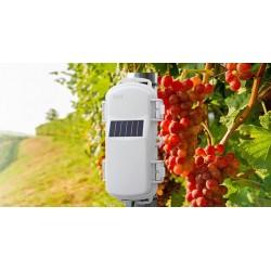 HOBONet Field Monitoring System