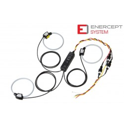 E23C5-101 Enercept System Calibrated (100A,RS485,Mb/BAC, 3Ph4W IEC)
