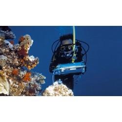 DIVING-PAM Fluorómetro Submarino WALZ para Fotosíntesis