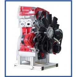 IVDB02 Modelo Seccionado do Motor de Gasolina DOHC MPI