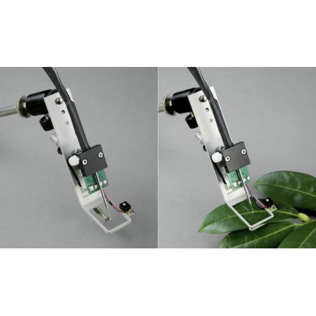 JUNIOR-BD Grampo para medir a intensidade da luz ambiente e da temperatura na folhas