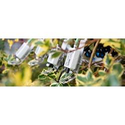 Cuatro MICRO-HEADs que realizan análisis de pulso de saturación con hojas abigarradas.