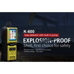 AO-K-600 Detector de Gas con bomba incorporada (la foto muestra sonda de mano opcional)