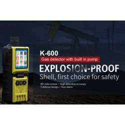 AO-K-600 Gas Detector (photo shows optional hand probe)