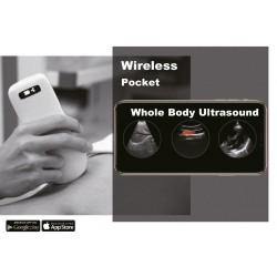 C10T Sonda de Ultrasonido de cuerpo entero
