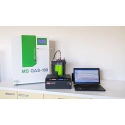 MS GAS Mass Spectrometer