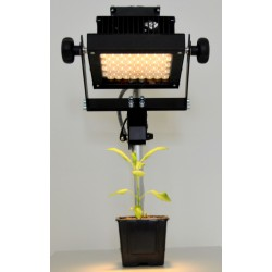 LED Lights SL-3500