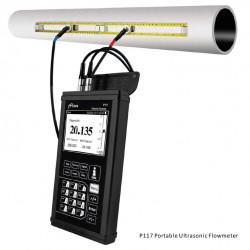 Portable Ultrasonic Flowmeter P117