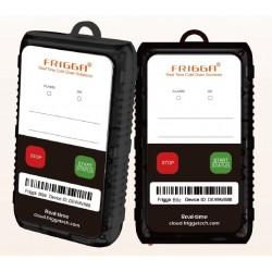 FRIGGA-A80 DATA LOGGER DE UM ÚNICO USO (60 dias)