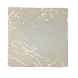 Xion ™ PEM-Nafion-1000-05 Membrane - AO-72600082