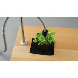 DUAL-BA Leaf Positioning Device WALZ