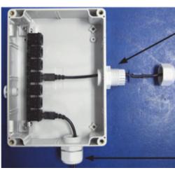 S-ADAPT-6 Caja con Duplicador de Sensores